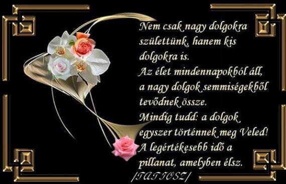 sírversek gyászversek idézetek GYÁSZVERSEK!